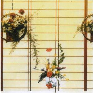 ролл шторы японские